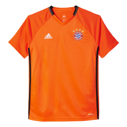 Bayern Munich Junior Training Jersey