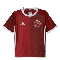 Denmark Home Junior Short Sleeve Jersey 2016