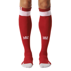 Denmark Home Sock 2016
