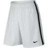 Nike Paris Saint-Germain 3rd Mens Short 2016/2017
