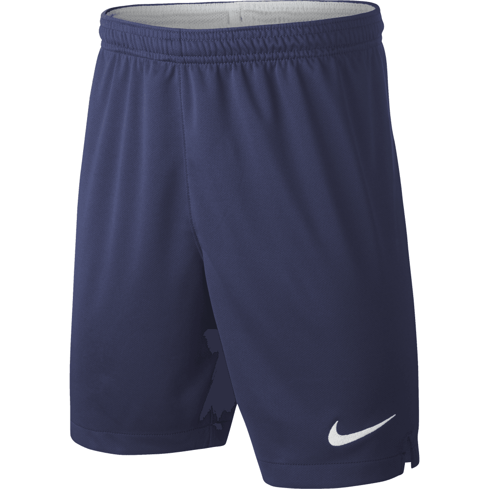 Nike Tottenham Hotspur Home Junior Short 2019 2020 Nike From Excell Sports Uk