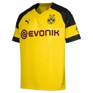 Borussia Dortmund Home Mens Short Sleeve Jersey 2018/2019