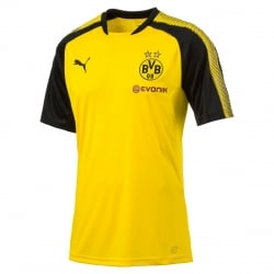 Borussia Dortmund Junior Training Jersey